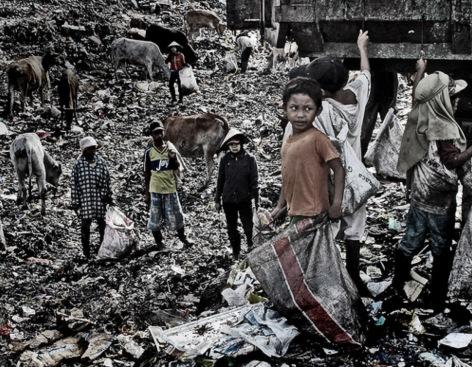 Vacas, adultos y niños comparten el basurero